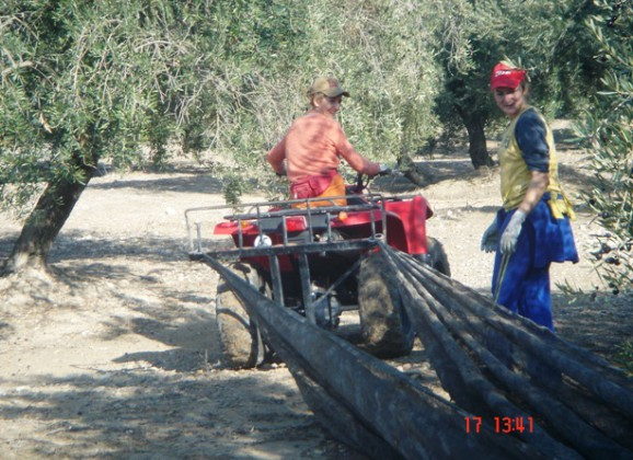 Ayudas para la prevención de riesgos laborales en empresas agrícolas