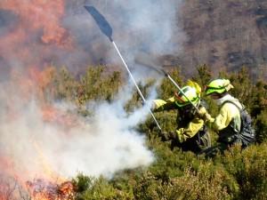 efectivos trabajan en la extinción de un incendio forestal