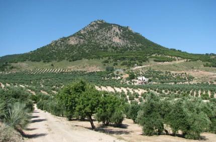 El otoño será más cálido y seco de lo habitual en toda España