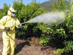agricultor realizando trabajos de aplicador de fitosanitarios