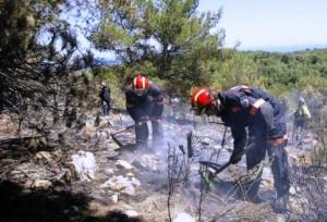 Agentes apagan un incendio forestal