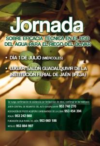 portada folleto jornada olivar