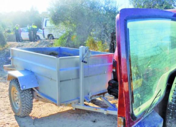 Detienen in fraganti a un hombre que había recogido 700 kilos de aceituna de un olivar que no era suyo