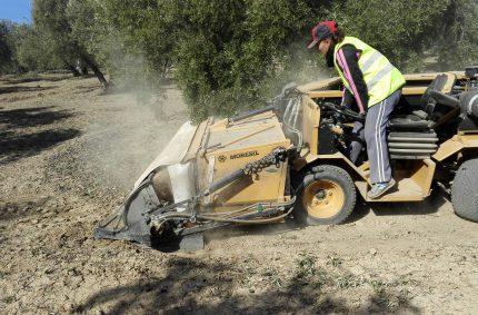 7.400 parados menos en Jaén que hace un año