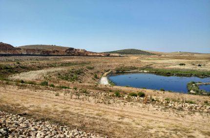 Los regantes defienden que las aguas regeneradas y desaladas ayudarán a alimentar a 2.000 millones de personas más en 2050