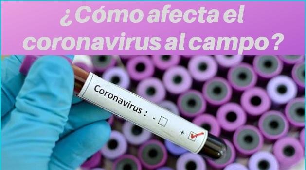!coronavirus
