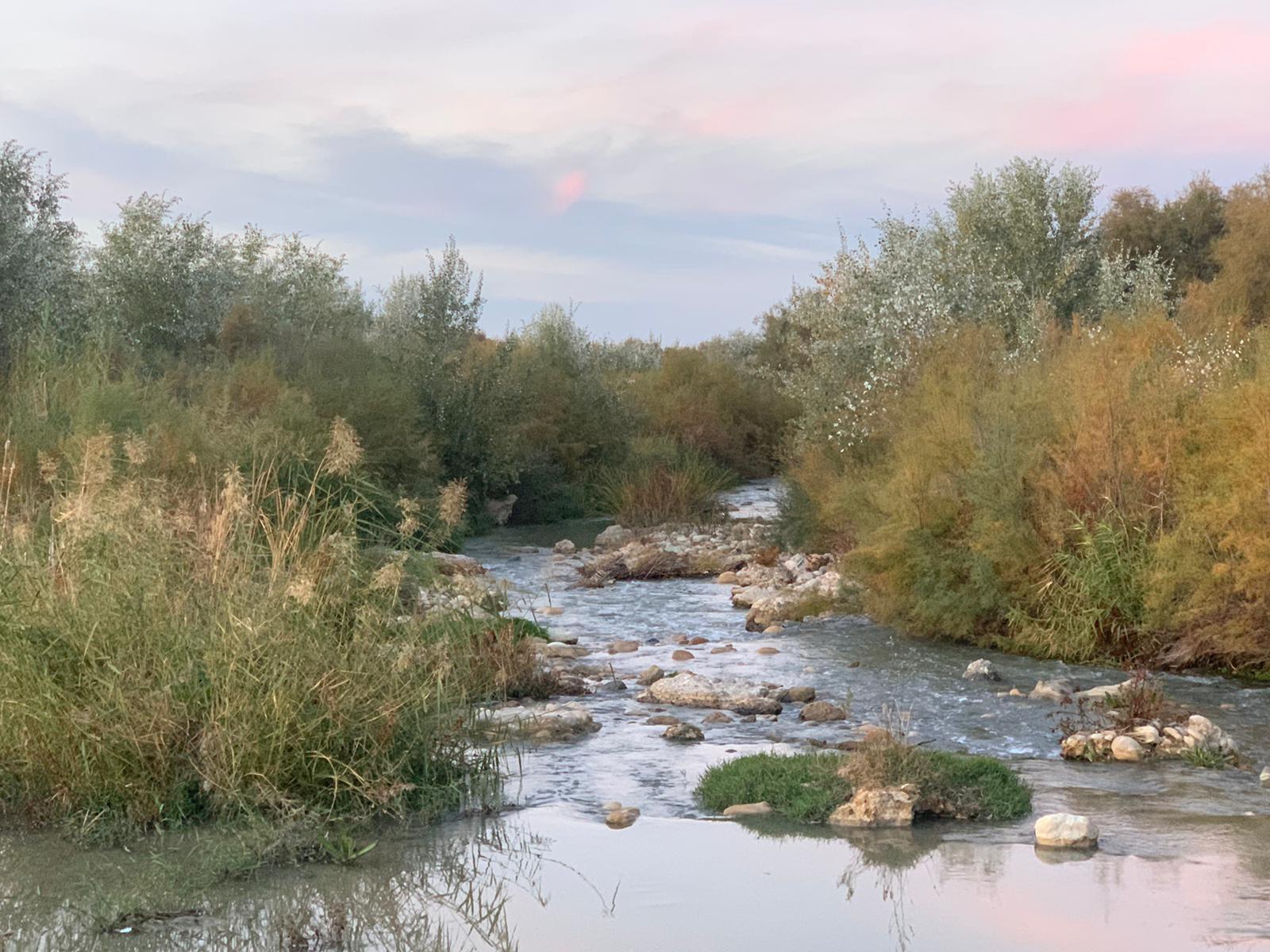 Actualizadas las zonas vulnerables a la contaminación por nitratos en Andalucía